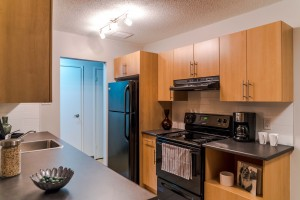 Apartments For Rent Winnipeg - Owen Apartment Kitchen - Towers Realty