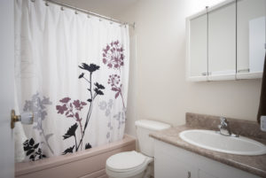 Towers Realty Group - Queensbury Apartments - Bathroom