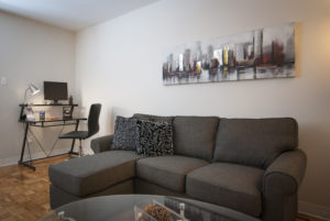 Towers Realty Group - Queensbury Apartments - Living Room 1