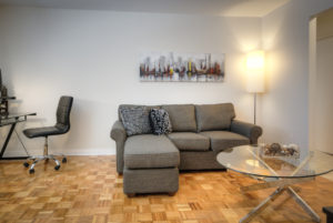 Towers Realty Group - Queensbury Apartments - Living Room 3