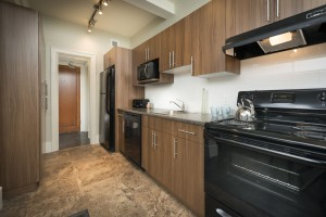 Towers Realty Group - Royal Oak Court - 277 River - Kitchen 2