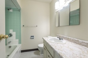 Towers Realty Group - Brookman Man - 80 Prevette Street - Bathroom2