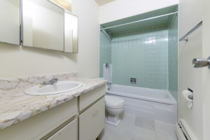 Towers Realty Group - Brookman Man - 80 Prevette Street - Bathroom1
