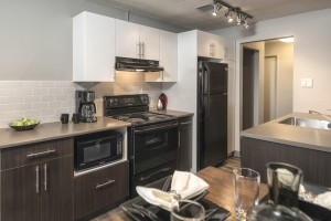 Towers Realty Group - Birchgrove Manor - 2BR - Kitchen