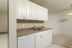 Towers Realty Group - 1000 Markham - Kitchen 3