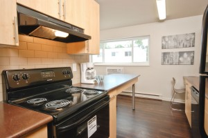 Apartments For Rent Winnipeg - Laralea Apartment Kitchen - Towers Realty