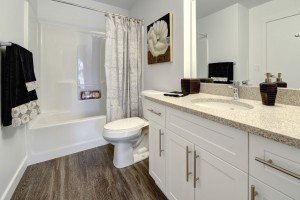 Towers Realty Group - The Ridge Apartments - 2350 McGillivray - Bathroom
