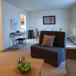 Apartments For Rent Winnipeg - Bonita Apartment Living Room - Towers Realty